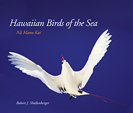 Hawaiian Birds of the Sea